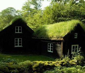 武蔵野美術大学教授退任記念 椎名純子「大地の棲家」人はなぜこのように棲むのか