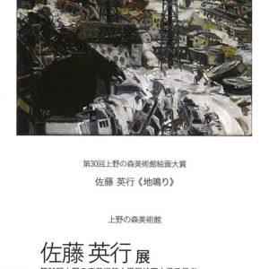 第30回上野の森美術館大賞展 佐藤英行展