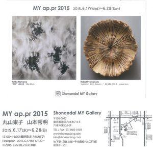 MY ap.pr 2015 丸山東子 山本秀明