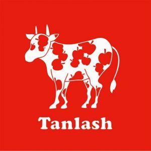 Tanlash vol.1
