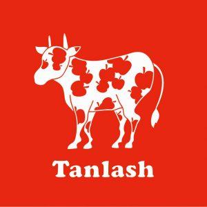「Tanlash vol.3」