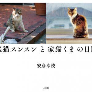 写真集『庭猫スンスンと家猫くまの日日』